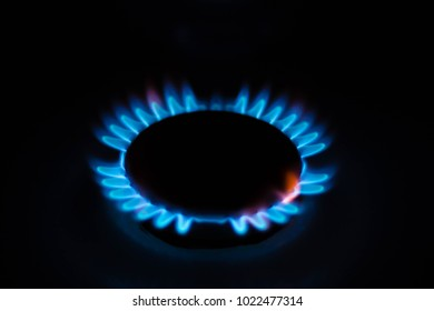 The burner on a gas stove