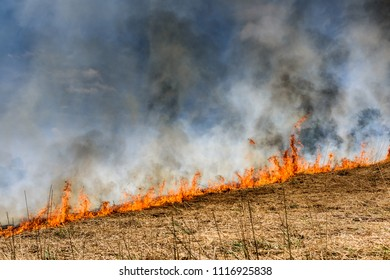 Burning agricultural field, smoke pollution. Global Warming.