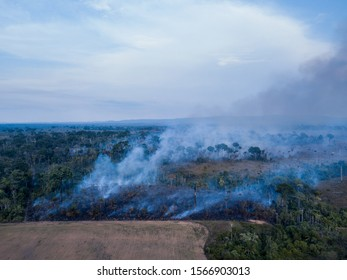 Burning of the Amazon rainforest at dusk to increase livestock grazing area and agriculture activities Area already deforested in the foreground. Deforestation, environment and climate change concept.