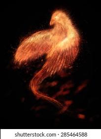 Burning bird phoenix  isolated