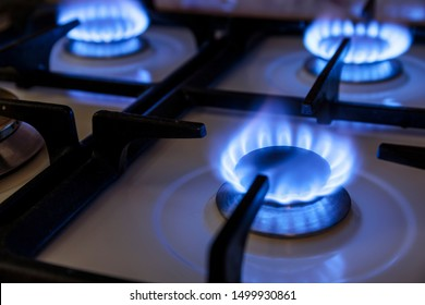 Burning blue flames gas. Focus on the front edge of the gas burners.