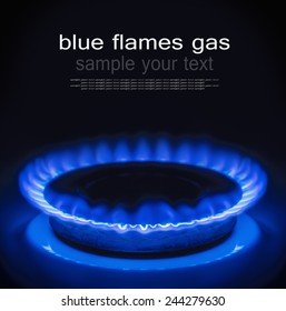 Burning blue gas. Focus on the front edge of the gas burners. The text serves as an example and can be easily removed