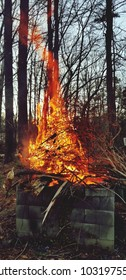 Burning of branches