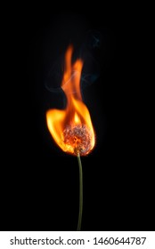Burning dandelion on fire with smoke and flames isolated on black background