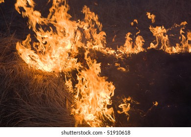 Burning dried grass at field