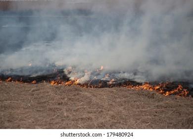 Burning dry grass