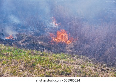 Burning dry grass in the desert during a drought in the spring