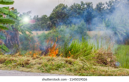 Burning dry grass on field ridge by farmer on nature background at countryside, there may causes dangers to the ozone depletion.