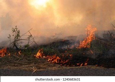 Burning fires cause pollution and carbon dioxide. And cause global warming