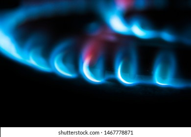 Burning gas. Blue flames close up in the dark on a black background