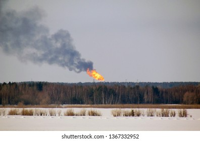 Burning gas flare on the forest background.