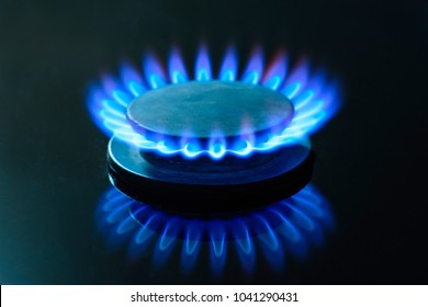 Burning gas, gas stove burner, hob in the kitchen.  The concept of problems with natural gas, rising gas prices, and wastage.