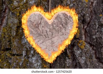 burning heart for love
