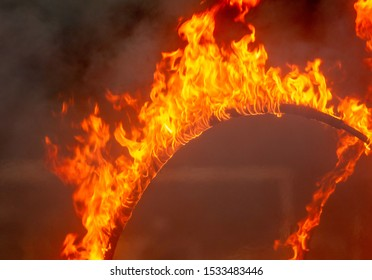 Burning hoop in nature. Flame of fire