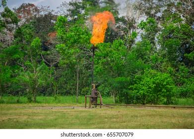 Burning oil gas flare near Limoncocha National Park in the Amazon rainforest in Ecuador