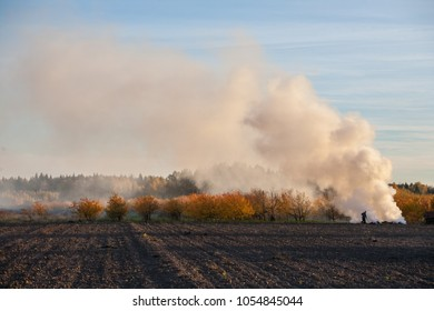Burning old grass on the farm field. Smoke.
