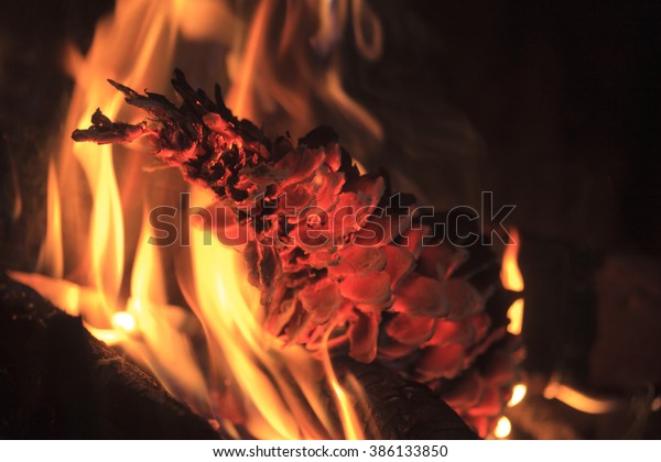 Burning Pine Cone Glowing Fireplace Stock Image Download Now