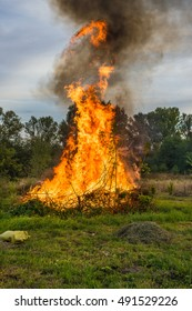 Burning some waste from tree cutting.