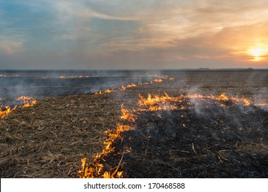Burning of straw on the field