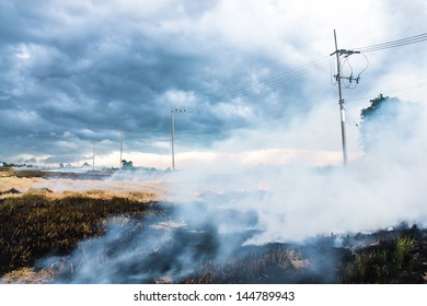 burning straw in rice plantation one cause to global warming