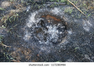 burning stubble and herbs in the land damages nature and wildlife,