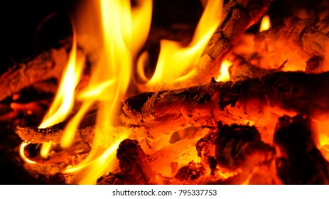 Burning wood in a campfire.