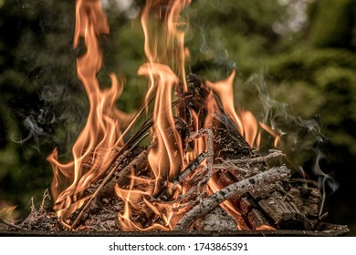 a burning wood fire on a blurred background