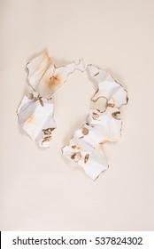Burnt paper on white background