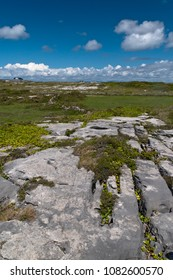 The burren of the Aran Islands here transitions to a fertile field of grass.  Photograph was taken from the path on Inishmore to Dun Aonghasa, Inishmore, the Aran Islands, County Galway, Ireland.
