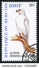 BURUNDI - CIRCA 2011: stamp printed by Burundi, shows Goshawk, circa 2011