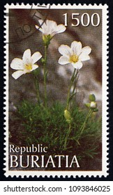 BURYATIA (RUSSIA) - CIRCA 1997: a stamp printed in Buryatia shows White Flowers, circa 1997