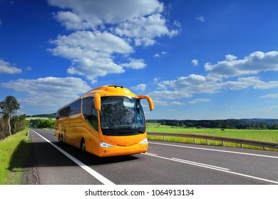 Bus on the road