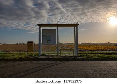 Bus shelter North Holland, The Netherlands
