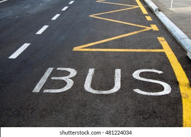 Bus stop sign painted on the road.