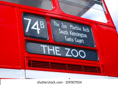 Bus to The Zoo