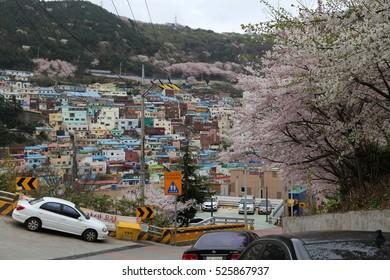 BUSAN - 4 APR: Gamcheon Culture Village in Busan, Korea on 4 April 2016