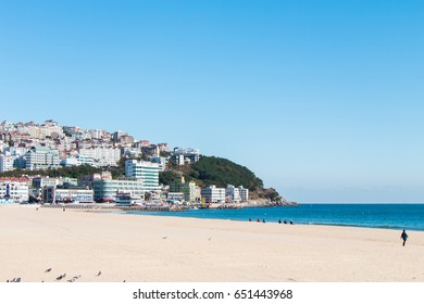 BUSAN SOUTH KOREA - NOV 01: Haeundae Beach, many pigeons and people were at the famous and beautiful beach with contrast scene between nature and city on November 01, 2016 in Busan, South Korea