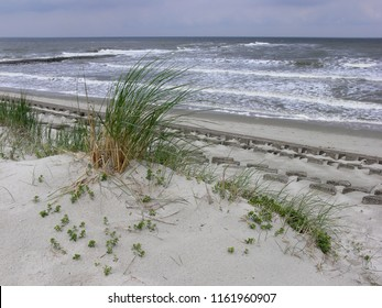 a bush of beach grass on fine white sand in front of vivid waves at the North Sea coast at the Island Wangerooge, Germany, a few rows of breakwaters can be seen between sand and water