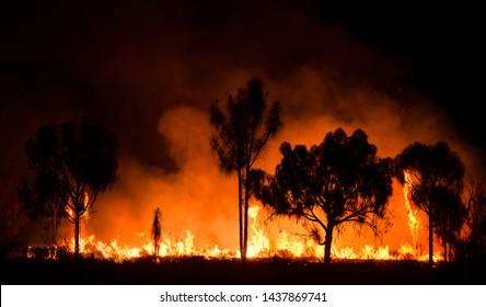 Bush fire In australian outback