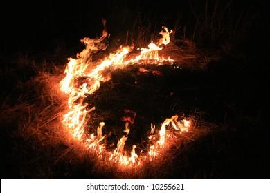 Bush Fire - The Red Centre, Australia