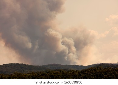 Bush fire smoke in a valley in The Blue Mountains in Australia