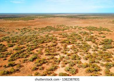 Bush vegetation on dry Australian plains