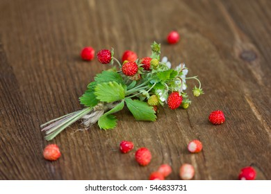 Bush of wild strawberry with berries and flowers on wooden background