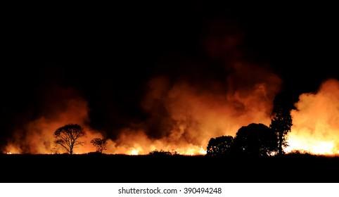 Bushfire burning orange and red smoke filled the sky at night.