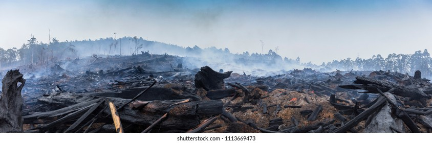 Bushfire smouldering in Australian Outback Panoramic