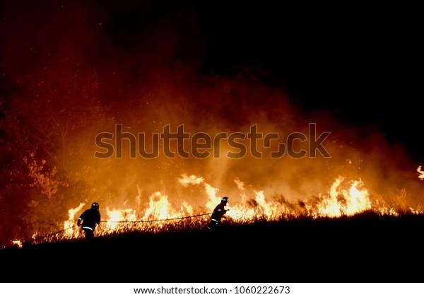 Incendies de brousse en Australie