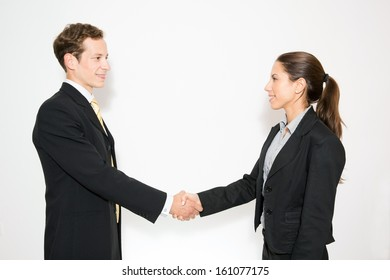 Bushiness dressed male and female shaking hands.