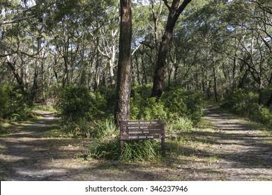 Bushwalking in Booderee National Park. Jervis Bay. NSW. Australia