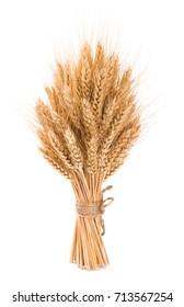 Bushy sheaf of wheat isolated on white background