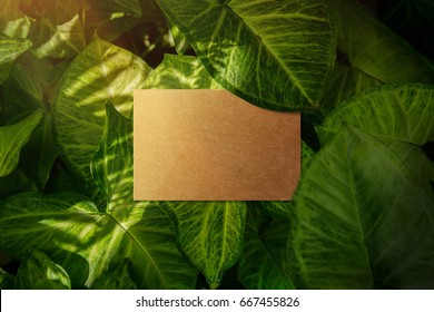Business card mockup, Craft recycle paper, Top view, Blank space for logo identity or text copy, Tropical Nature leaf layer as background